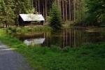 phoca_thumb_l_09-vyzlovka-priroda-jaro-leto-2006