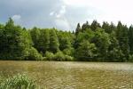 phoca_thumb_l_13-vyzlovka-priroda-jaro-leto-2004